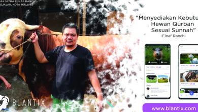 Photo of Blantix, Startup Jual Beli Hewan Ternak Karya Mahasiswa Unikama Malang