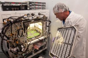 Penelitian Tumbuhan di Luar Angkasa oleh NASA (Gambar via www.nasa.gov)