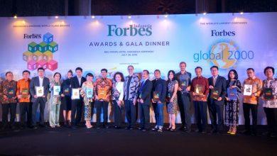 Photo of Ngulik Bamboomedia, Bisnis IT Asal Indoensia yang Go International