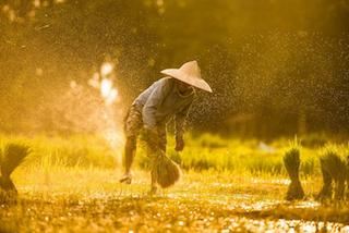 Photo of Pedesaan Akan Jadi Fokus Pemerintah Untuk Kembangkan Pariwisata
