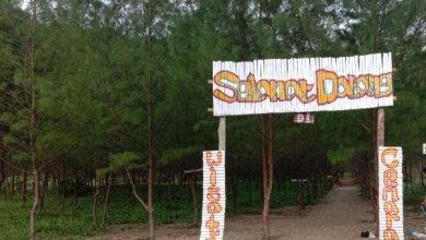 Photo of Kreatif! Mahasiswa Unikama Manfaatkan Hutan Cemara Jadi Wisata
