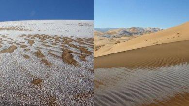 Gurun Sahara terselimuti oleh es (Foto via Instagram @kaaarimo)
