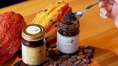 Kecap Cacao Jang terbuat dari bahan dasar cokelat (Foto via japantoday.com)